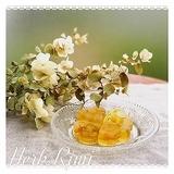 11/3(日)優しいハーブの香りのワークショップ :写真